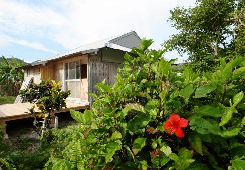 ・6月30日 「リリーの家」「海みる屋根の宿」が加計呂麻島でスタートします。